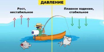 Давление и клев рыбы