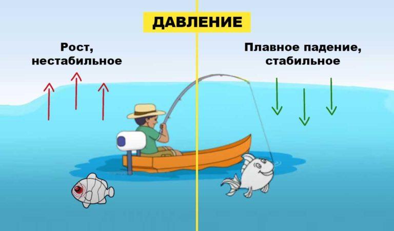 Влияние давления на клев рыбы. При каком давлении лучше клюет рыба?