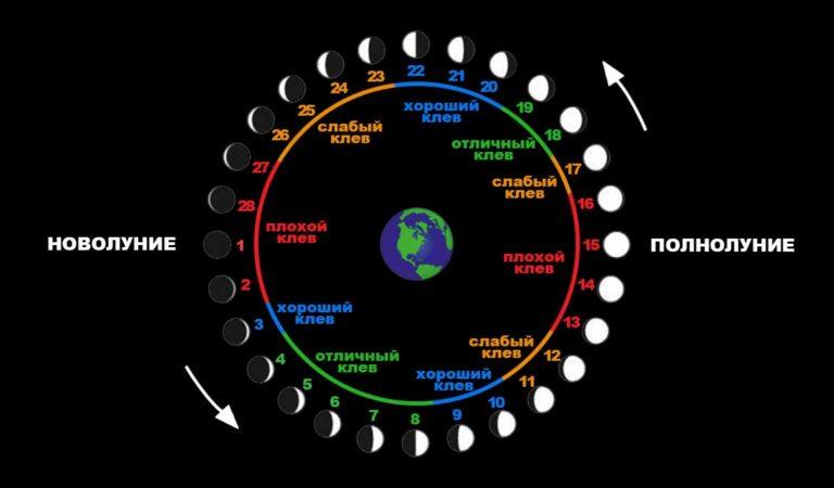 Влияние Луны на клев рыбы. При какой Луне лучше клюет рыба?