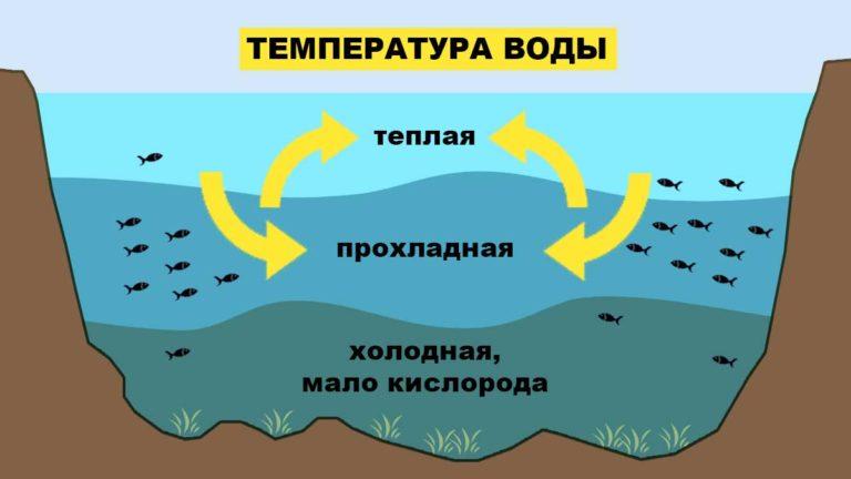Влияние температуры воды на клев