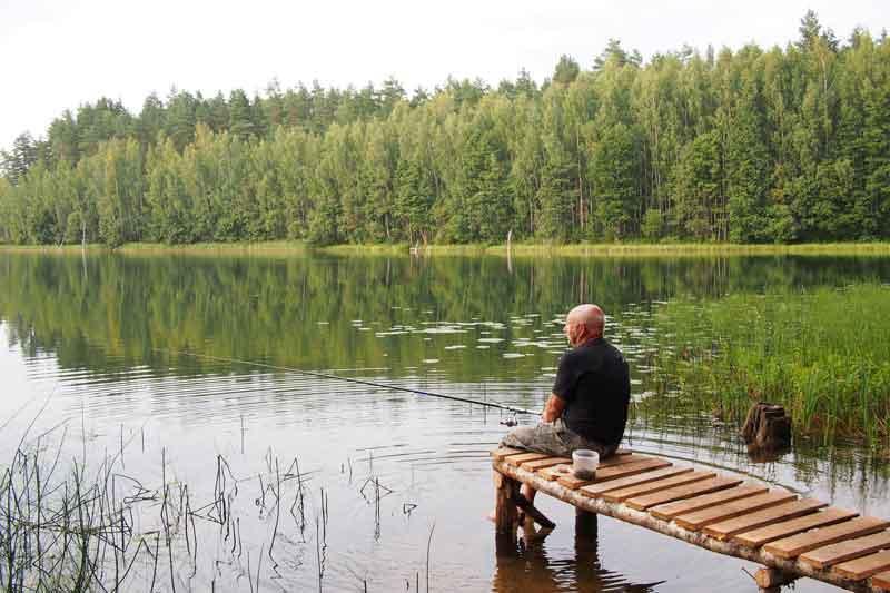 Тишина на рыбалке