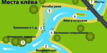Места клева рыбы на реке
