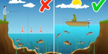 Уровень воды и клев рыбы