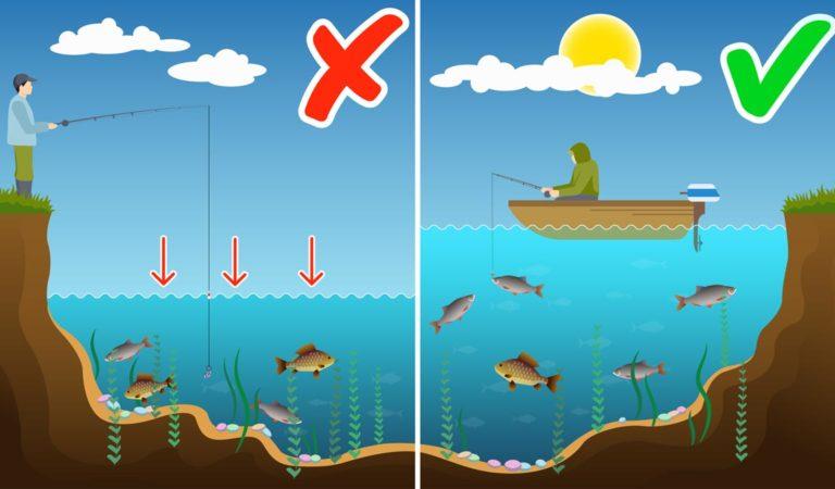 Влияние уровня воды на клев рыбы. При каком уровне воды лучше клюет рыба?