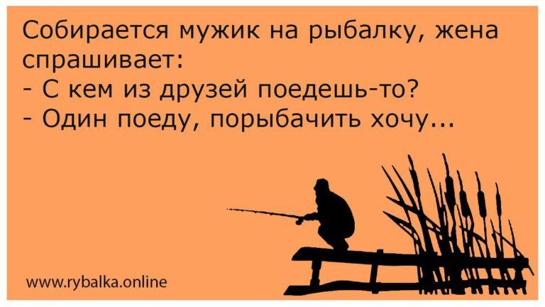 Собирается мужик на рыбалку, жена спрашивает: - С кем из друзей поедешь-то? - Один поеду, порыбачить хочу...