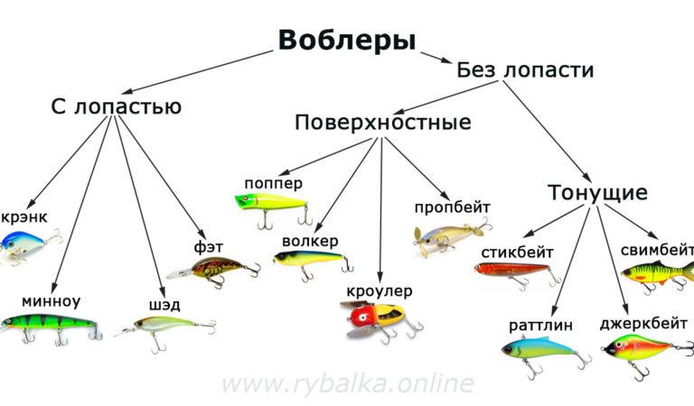 Как читать маркировку воблеров? Классификация и типы проводок воблеров